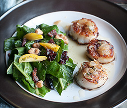Seared Scallops in White Wine Sauce